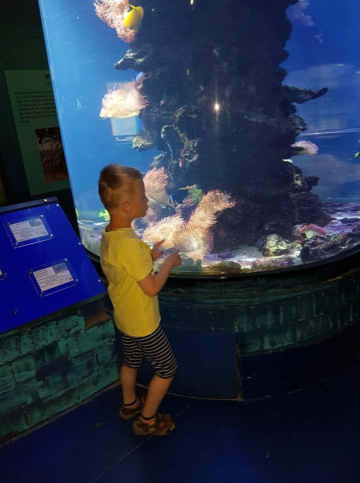 Ben am Aquarium